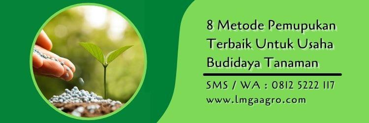 8 Metode Pemupukan Terbaik Untuk Usaha Budidaya Tanaman