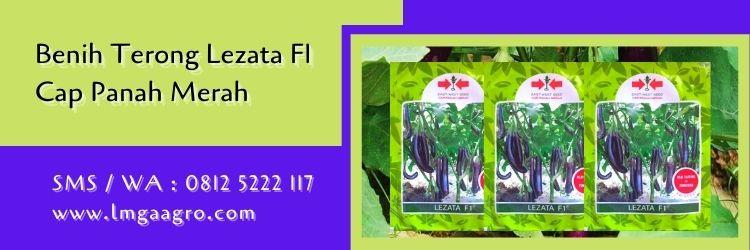 terong lezata F1,terong ungu,budidaya terong,benih terong,cap panah merah,lmga agro